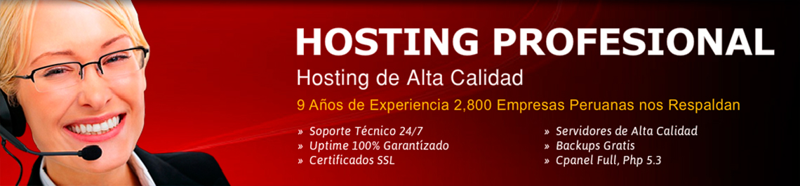 hosting_profesional1
